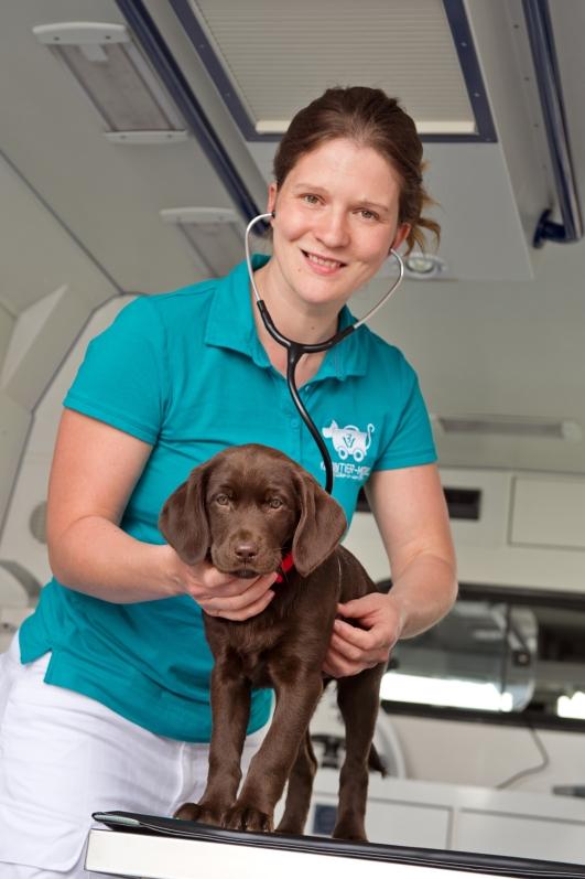Tieraerztin Nadine Stein mit Patient